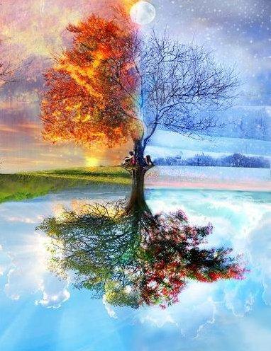 Les saisons. dans AU HASARD D'UNE PROMENADE. 230922_10150296927069167_5389412_n