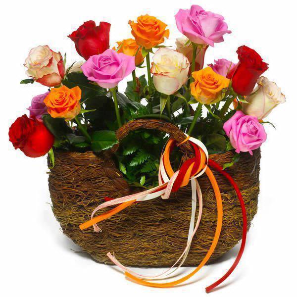 Des fleurs pour mes amis. dans AU HASARD D'UNE PROMENADE. 154622_478062035566189_871548065_n