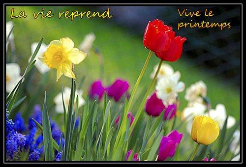 Le printemps. dans POESIES : LE PRINTEMPS. 6706_10200677273397590_1283532446_n