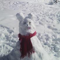 Lapin des neiges. dans Images droles. 73366_4402151700669_13091997_n